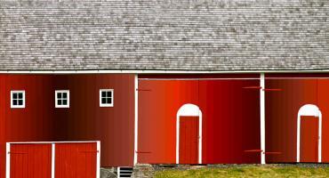 Hot Blood Flowing, Mose McLean Barn. Photograph by Dan Mangan