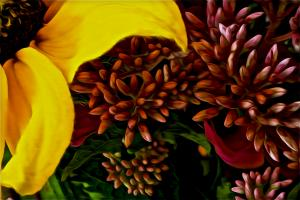 Study in Yellow and Magenta