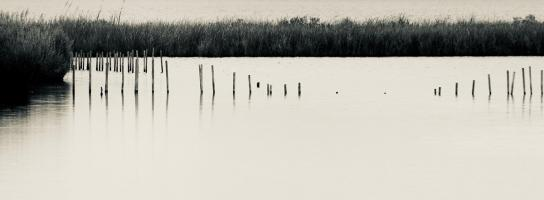 Old Posts, Blackwater