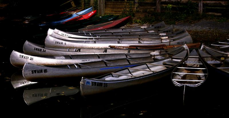Canoes and Kayaks, Autumn. Photograph by Dan Mangan