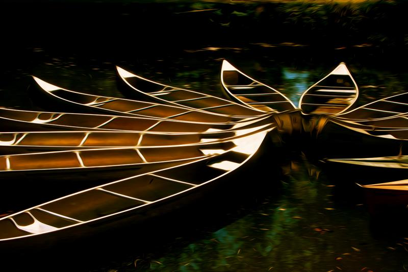 Moored Canoes, Chesapeake and Ohio Canal. Photograph by Dan Mangan