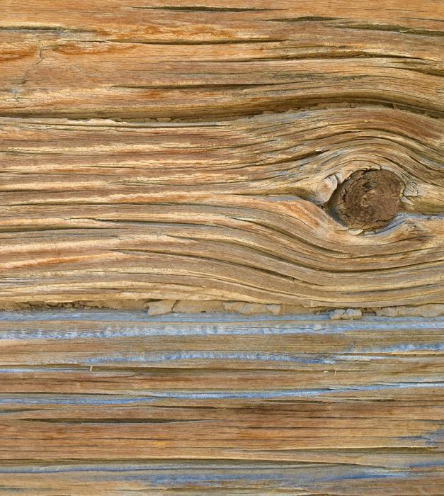 Desert Wood 6