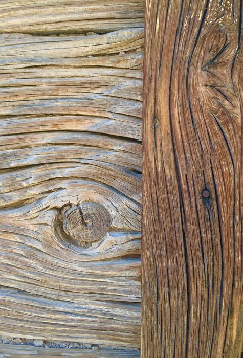 Desert Wood 3